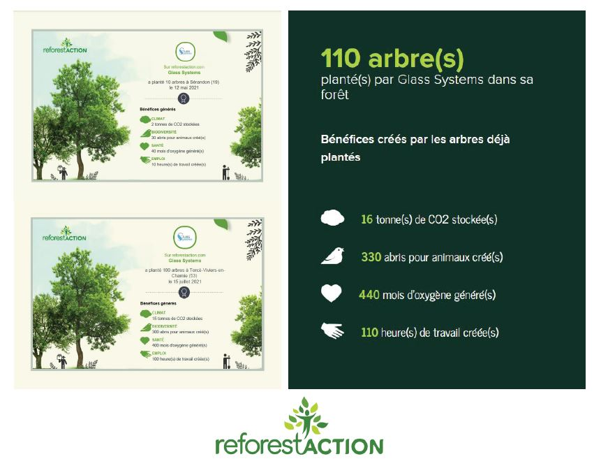 glass systems reforestaction