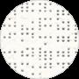ZIP_PERFORM_BLANC_92-2044